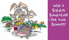 CS_bunny-bungalow_ postcard